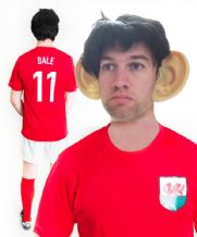 Gareth Bale Wales Funny Football Fancy Dress Costume
